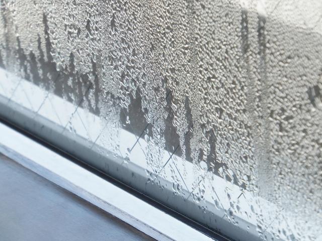 ゴムパッキンにカビが!窓周りに発生するカビの原因や掃除方法を公開